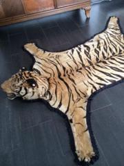 Tigerfell mit Verkaufsgenehmigung !