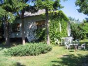 Ungarn Plattensee Ferienhaus