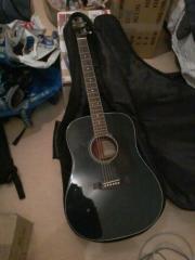 Walden Gitarre