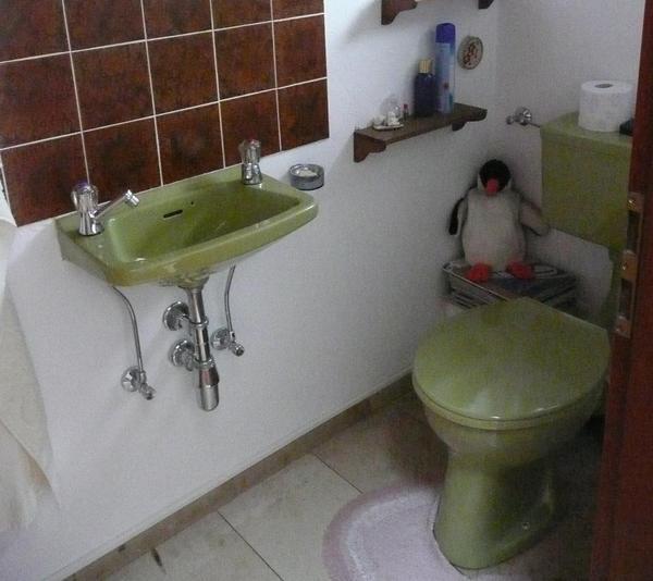 g ste wc aus den 70er jahren moosgr nes stand wc flachsp ler und kleines handwaschbecken von. Black Bedroom Furniture Sets. Home Design Ideas