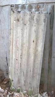 5 Wellplatten