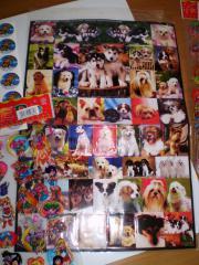 500 Sticker
