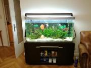 Aquarium 320 Liter