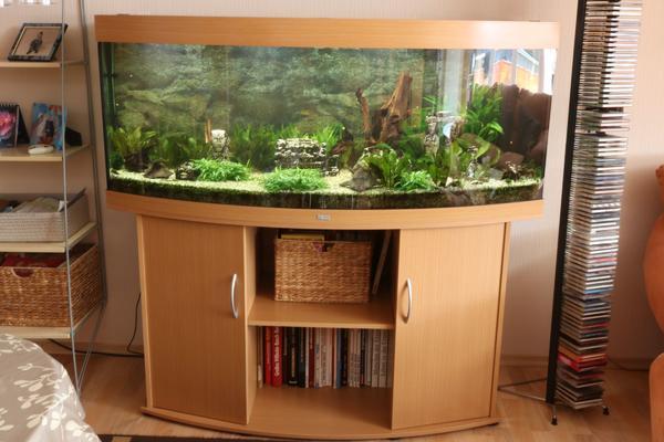 beleuchtung aquarium kleinanzeigen tiermarkt deinetierwelt. Black Bedroom Furniture Sets. Home Design Ideas