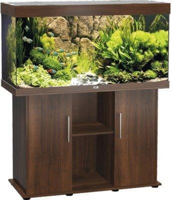 aquarium rueckwand kaufen aquarium rueckwand gebraucht. Black Bedroom Furniture Sets. Home Design Ideas