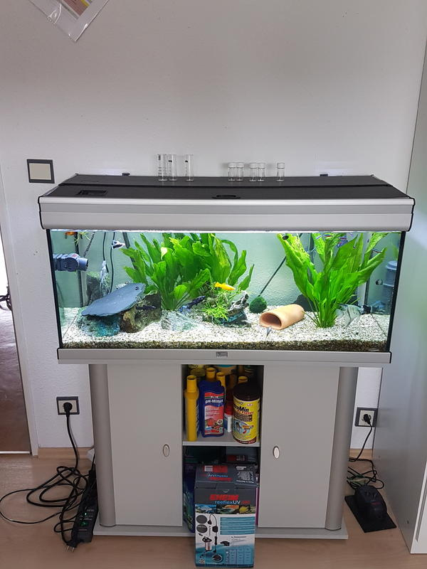 aquarium fischen gebraucht kaufen nur 4 st bis 65. Black Bedroom Furniture Sets. Home Design Ideas