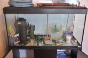 Aquarium Set 200