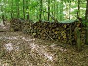Brennholz - 10 Ster -