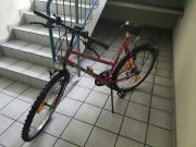 Damenmontenbike-Montenbike 26