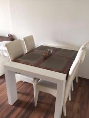 Esszimmer Stühle und