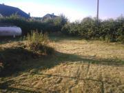 Garten- Grundstücksarbeiten Baumfällung Unkraut Moos