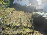 Gartengrundstück zu vermieten