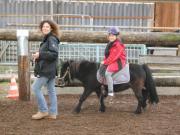 geführtes Ponyreiten / Kinderreiten