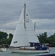 Gepflegte Segelyacht Segelboot