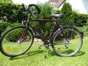 Herren-Fahrrad (Tourenrad)