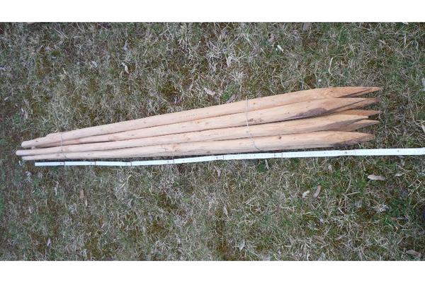 Holzpfähle mit Spitze 1 6