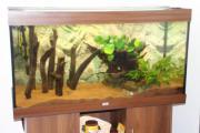 Juwel Aquarium ca.