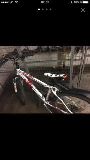 KTM Rad Moutain
