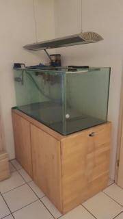 Meerwasseraquarium 430 Liter