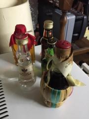 Miniatur Flaschen mit Alkohol
