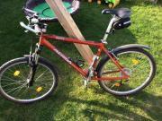 Mountainbike Rahmengröße 19