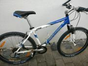 MTB Specialized Mountainbike