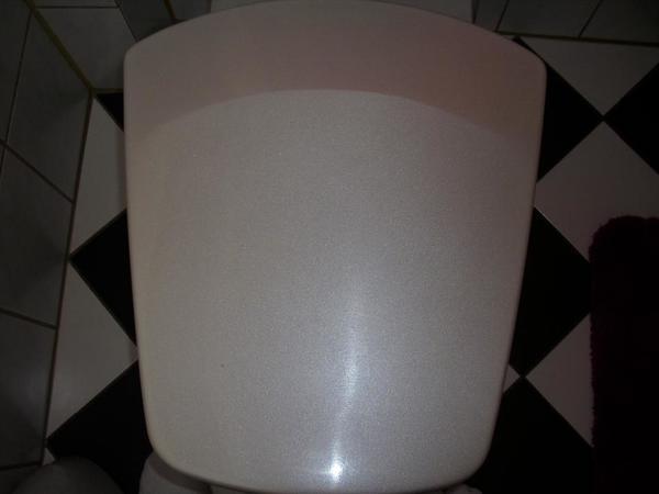 Neuen Pressalit Tiora Toilettendeckel Farbe