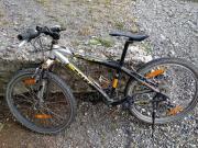 Neuer Preis - Biker