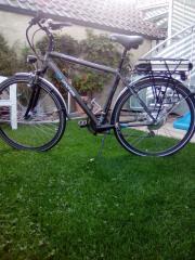 Pedelec E-Bike