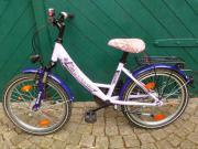Pegasus Pink Avanti