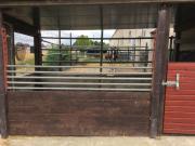 Pony Box zu