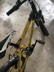 scott Fahrrad 20