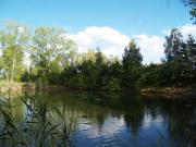 See, Seegrundstück, Fischweiher,