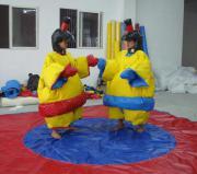 Sumoringen, Sumo Wrestling,