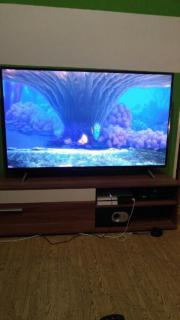 TCL 55 zoll