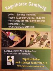 Vogelbörse Gamburg/ nächster