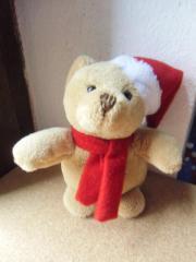 Weihnachtsbär neu