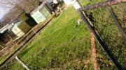 Wunderschönen Garten abzugeben